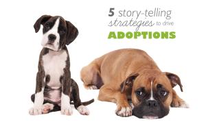 Small_StoryTellingforAdoptions
